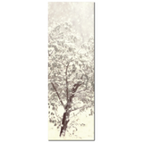 Ethereal Snow Fine Art Photography 20 x 60 x 1.25 inch Premium Canvas Gallery Wrap - Sylvia Coomes