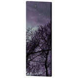 Gothic Canvas - Purple Home Decor - Black and Purple - Purple Trees Canvas - Large Canvas - 20 x 60 Canvas - Tall Canvas - Home decor