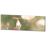 Flowers 12 Fine Art Photography Panoramic 20 x 60 x 1.25 inch Premium Canvas Gallery Wrap - Sylvia Coomes