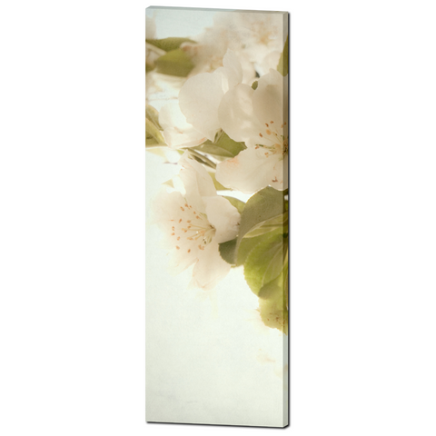 White Flowers Canvas - Cottage Chic Canvas - Large Canvas - Tall Canvas - White and Green - Large Canvas - Floral Wall Art - 20 x 60 Canvas - Sylvia Coomes
