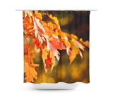 Fleeting Warmth Shower Curtain - Sylvia Coomes
