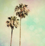 Palm Trees 1 Shower Curtain - Sylvia Coomes