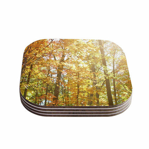 Autumn Trees 2 Coaster Set