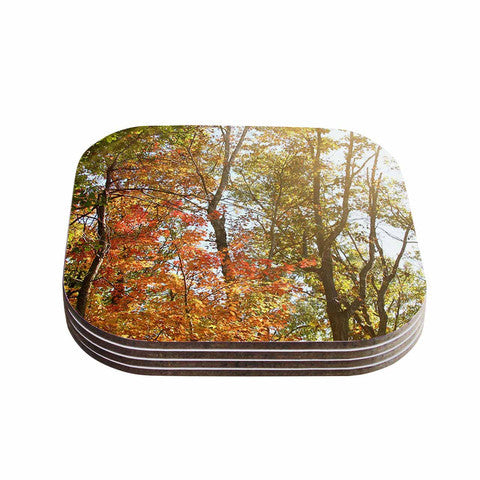 Autumn Trees 1 Coaster Set - Sylvia Coomes