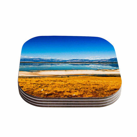 Reflection Coaster Set - Sylvia Coomes