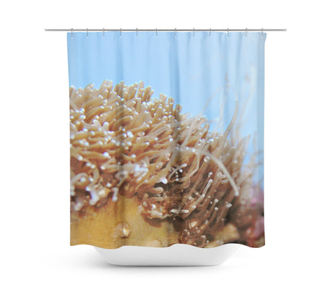Under the Sea Shower Curtain - Sylvia Coomes