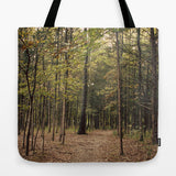 Art Tote Beach Bag In the Woods 1 photography green forest brown woods woodland trees mother nature ethereal light branches lake fashion