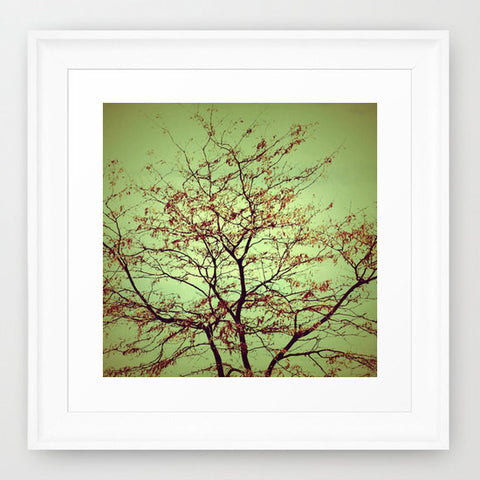 Tree Photography - Nature photograph - Abstract Art - Sage Green -Burnt Orange - Modern photo - wall Print - home decor