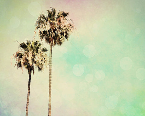 Palm Trees Photo - Beach photograph - Pastel Rainbow Colors - Modern Wall Print - California photograph - wall Print - Beach House decor - Sylvia Coomes