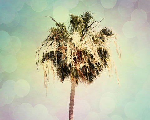 Beach photograph - Palm Tree Photo - Pastel Rainbow Colors - Modern Wall Print - California photograph - wall Print - Beach House decor - Sylvia Coomes
