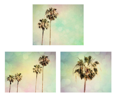 Palm Tree Photography Set - Beach House decor - Pastel photos - Wall Print Collection - Modern Photographs - Palm Trees Photo Set - 3 photos - Sylvia Coomes