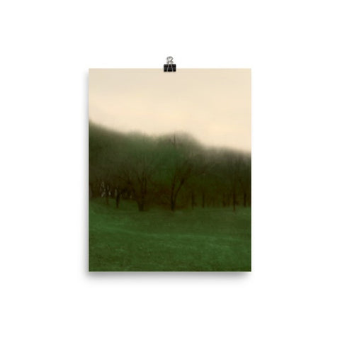 Abstract Trees in a Row Matte Poster
