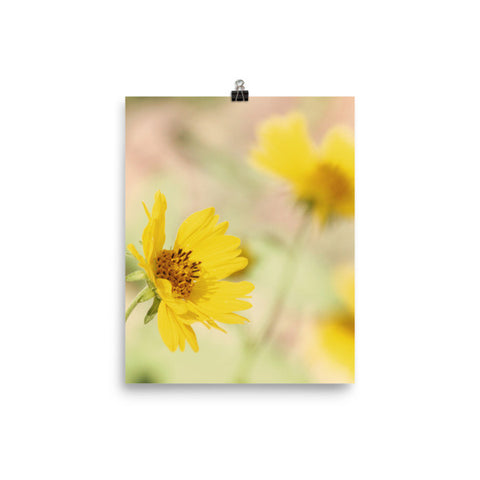 Abstract Flowers Matte Poster