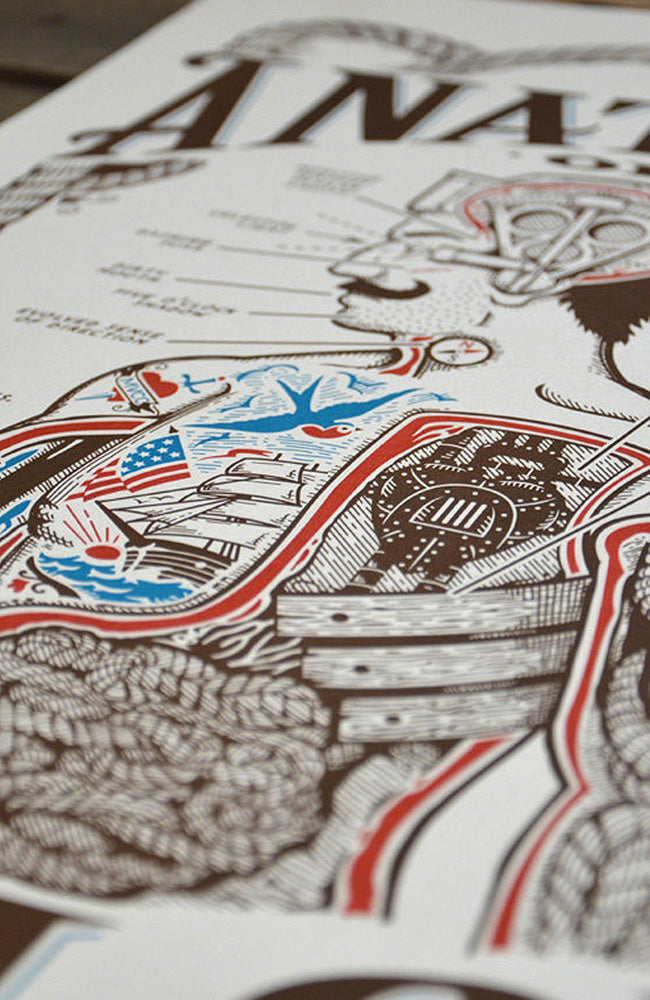Anatomy of a Sailor Poster Print