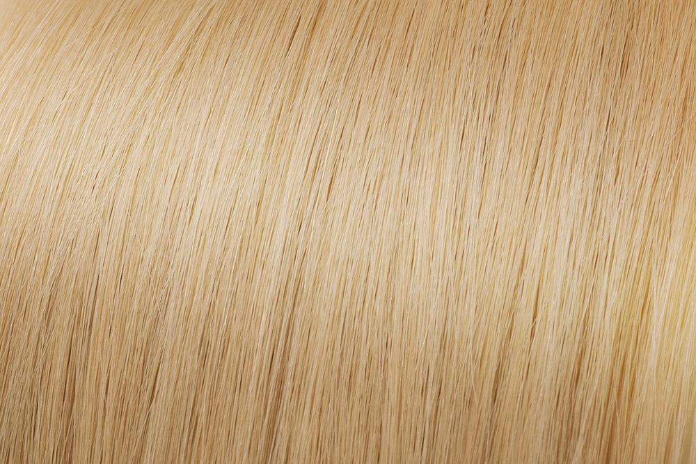 Clip In Extensions: Light Golden Blonde #22
