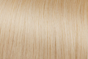Clip In Extensions: Lightest Ash Blonde #60