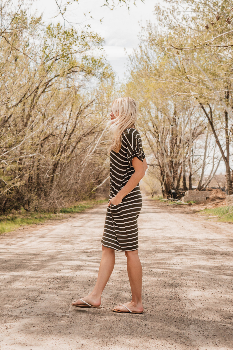 Paige Stripe V-Neck Dress