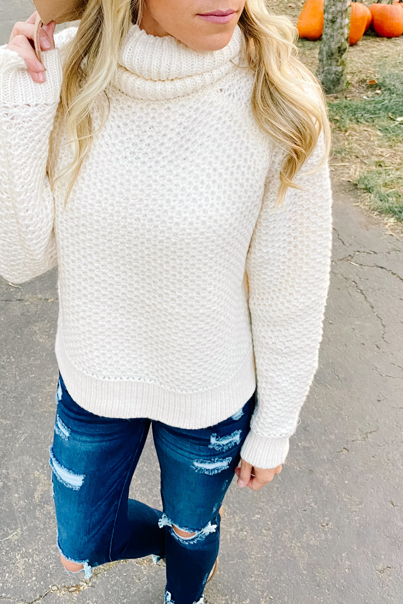Hailey Turtleneck Sweater