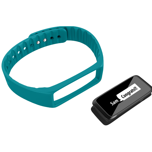 Striiv Fusion Accessory Bands (3 Colors) - Striiv  - 2