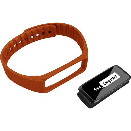 Striiv Fusion Accessory Bands (3 Colors) - Striiv  - 3