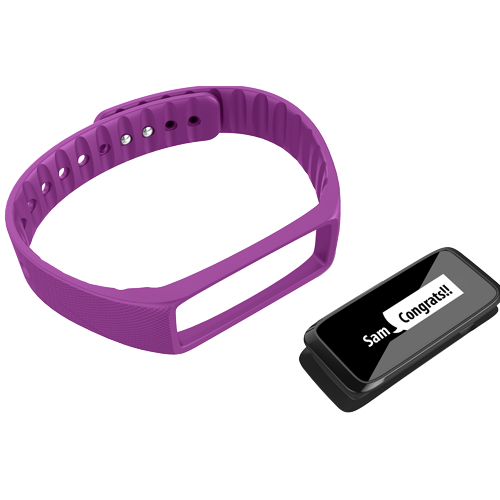 Striiv Fusion Accessory Bands (3 Colors) - Striiv  - 4