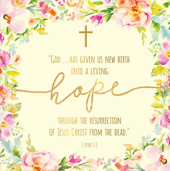 Compassion Charity Easter Cards: Living Hope (5 Pack)
