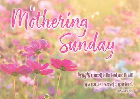 On Mothering Sunday - Postcard Pink (Pack of 24)