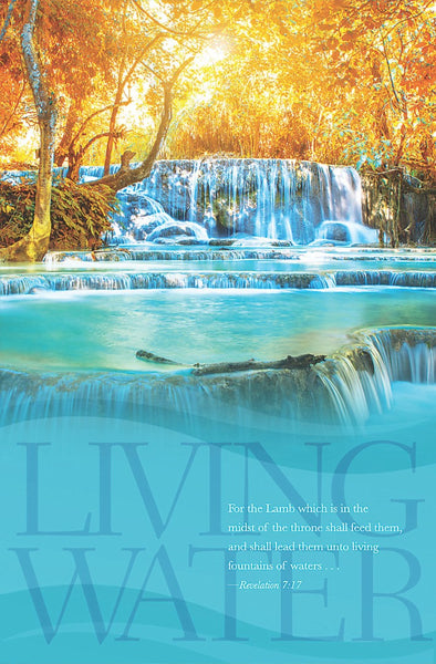 Living Waters Bulletin (Pack of 100)