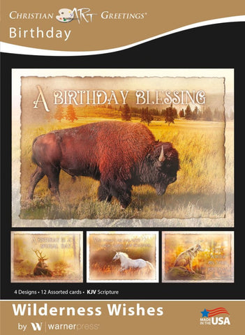 Wilderness Wishes Birthday Boxed Cards (pack of 12)