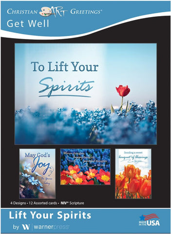 Life Your Spirits Get Well Boxed Cards (pack of 12)