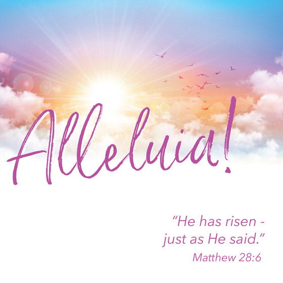 Easter Cards: Alleluia (5 Pack)