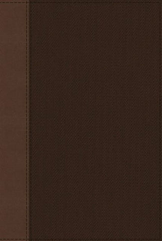NRSV Cultural Backgrounds Study Bible, Tan/Brown
