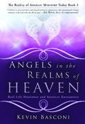 Angels In The Realms Of Heaven Paperback Book - Kevin Basconi - Re-vived.com
