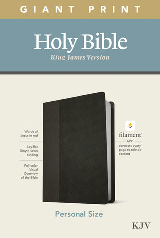 KJV Personal Size Giant Print Bible, Filament Edition, Black Imitation Leather, Large Print