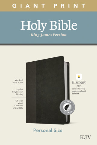 KJV Personal Size Giant Print Bible, Filament Edition, Black Imitation Leather – Large Print