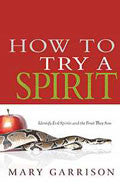 How To Try A Spirit Paperback Book - Mary Garrison - Re-vived.com