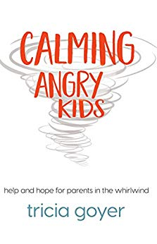 Calming Angry Kids: Help and Hope For Parents In The Whirlwind