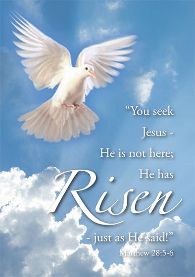 Easter Cards: He Has Risen/Dove (5 Pack)
