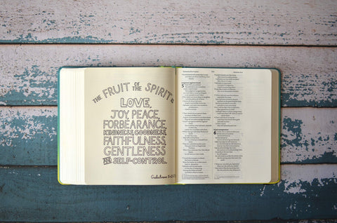 NIV Soul Survivor Journalling Bible