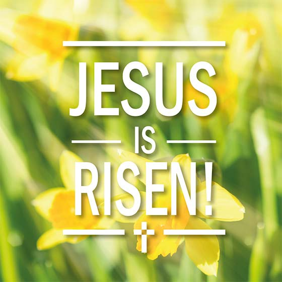 Easter Cards: Jesus Is Risen (5 Pack)