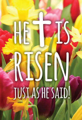 Compassion Charity Easter Cards: He Is Risen (5 Pack)