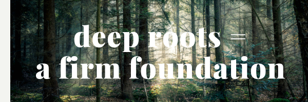 Deep Roots Equal a Firm Foundation