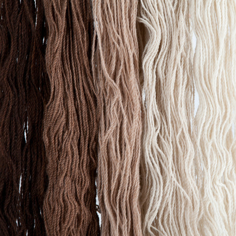 Cafe Olé, Hand-dyed 2-ply Tapestry Yarn