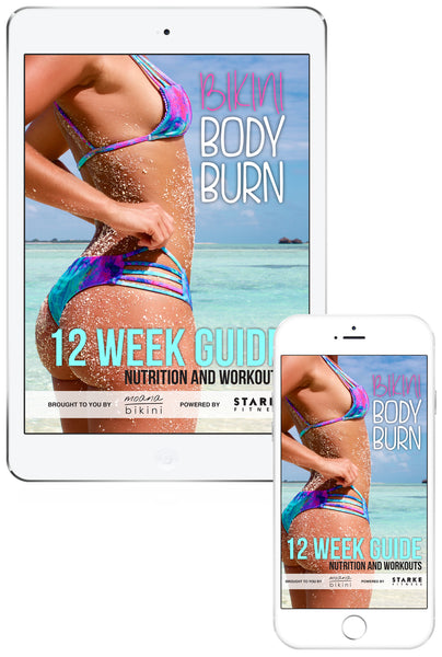 12 WEEK GUIDE (eBook)