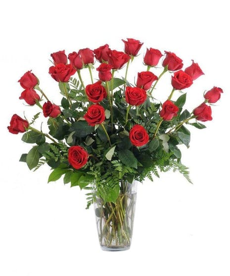 2 dz Classic Red Roses