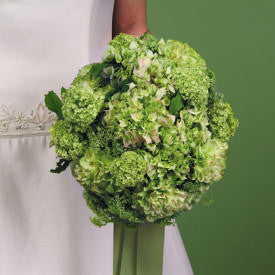 Green Hydrangea and Carnation Bouquet