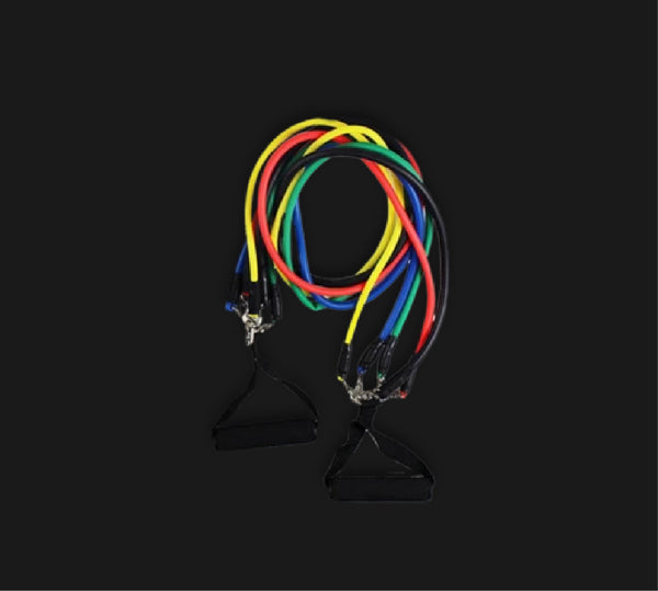 Resistance Bands and Home Training Program