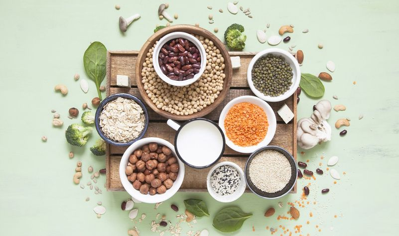 The Guide to Plant Based Proteins