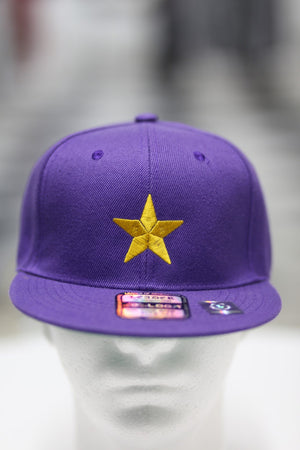 Star Dawg fitted cap, purple