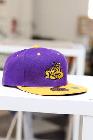 Get @ Me Dawg snapback, purple/gold